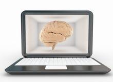 Computerlaptop en hersenen Stock Foto