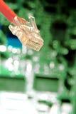Computernetz-Seilzugjack-Bolzen-und Leiterplatte stockfotos