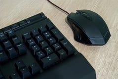 Computertastatur und -maus lizenzfreie stockbilder