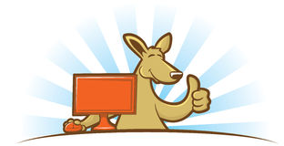 Computing Kangaroo Stock Photography