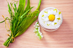 Comsetics with natural ingredients. Natural spa beauty product, organic cosmetics Royalty Free Stock Images