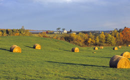 Comté de Lancaster Photographie stock libre de droits