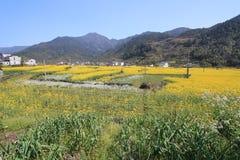 Comté de Wuyuan en Chine Image libre de droits