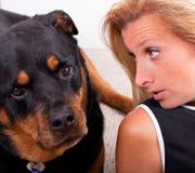 Comunicando con cane Immagini Stock