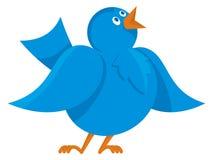 Comunicazione blu dell'uccello Fotografia Stock