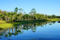 Comunidad de las palmas de Tampa Fotografía de archivo libre de regalías