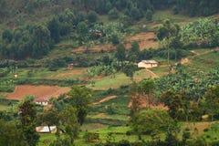 Comunidad rural de Uganda Imagen de archivo libre de regalías
