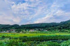 A comunidade de exploração agrícola sob um céu azul encheu-se com a nuvem branca inchado imagem de stock