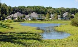 A comunidade dianteira do lago Foto de Stock