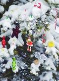 Conífera adornada en jardín después de nevar Fotos de archivo