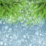 Con el árbol y la nieve de abeto Imágenes de archivo libres de regalías
