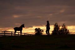 Con el caballo en la puesta del sol Imagen de archivo libre de regalías