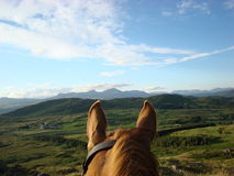 Con el montar a caballo de los oídos de los caballos en Cumbria Foto de archivo