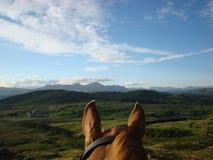 Con el montar a caballo de los oídos de los caballos en Cumbria Fotografía de archivo