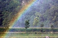 Con el rainbau fotografía de archivo