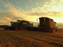 Con el sol colgando bajo en el horizonte, un trigo de la cosecha de la cosechadora en el medio de un campo de granja Imágenes de archivo libres de regalías