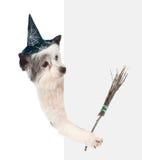 con el sombrero para Halloween y con el palillo de la escoba de brujas Aislado en blanco Imagenes de archivo