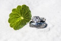 Con estos anillos Imagen de archivo libre de regalías