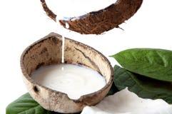 Con fragranza fresca della noce di cocco Fotografia Stock Libera da Diritti
