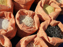 Con i sacchetti di granulo. Fotografia Stock