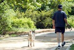 Con il cane immagine stock libera da diritti