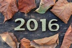 2016 con le foglie di caduta Fotografia Stock Libera da Diritti