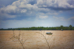 Con Phung Island. The view on the driver of Ben Tre Stock Images