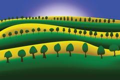 Conala crop field - vector Stock Photography