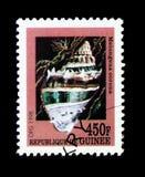 Conca della corona di Florida (corona) di Melongena, serie delle lumache di mare, circa Fotografia Stock Libera da Diritti