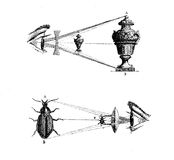 Concave and convex lens effects, vintage engraving Stock Images