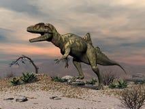 Concavenator dinosaur walking in the desert - 3D render. Concavenator dinosaur walking in the desert by sunset - 3D render stock illustration