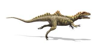Concavenator dinosaurie Royaltyfria Bilder