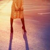Conceito à moda da forma, mulher bonita elegante no vestido do leopardo imagens de stock royalty free