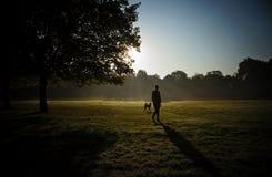 Conceito: animais de estimação e proprietários A mulher tem um divertimento com seu cão no parque do verão Foto de Stock