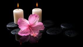 Conceito bonito dos termas do hibiscus cor-de-rosa delicado, velas Imagem de Stock