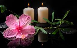 Conceito bonito dos termas do hibiscus, passiflora da gavinha Fotos de Stock Royalty Free