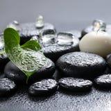 Conceito bonito dos termas do lírio, do gelo e de velas verdes de Calla da folha Fotografia de Stock Royalty Free