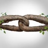 Conceito Chain forte Foto de Stock Royalty Free