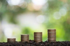 Conceito crescente do dinheiro fotos de stock royalty free