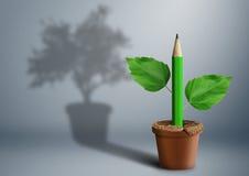 Conceito criativo da ideia nova, lápis verde que cresce do potenciômetro fotografia de stock