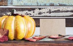 conceito da ação de graças e do outono Foto de Stock