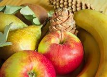 Conceito da ação de graças e do outono com frutos sazonais Imagem de Stock Royalty Free