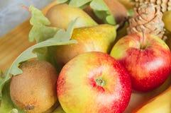 Conceito da ação de graças e do outono com frutos sazonais Imagem de Stock