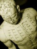 Conceito da acupunctura Foto de Stock
