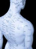 Conceito da acupunctura Fotografia de Stock