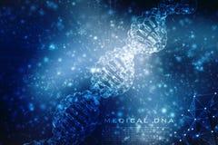 Conceito da bioquímica com a molécula do ADN isolada no fundo MÉDICO, rendição 3d Fotografia de Stock Royalty Free