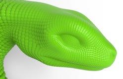 Conceito da cabeça da serpente verde Imagem de Stock