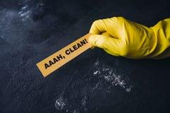 Conceito da casa ou do escritório da limpeza Fotos de Stock