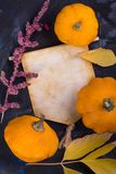 Conceito da cena do outono da queda imagens de stock