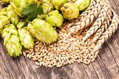 Conceito da cerveja Imagem de Stock Royalty Free